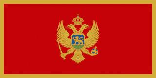 몬테네그로 깃발
